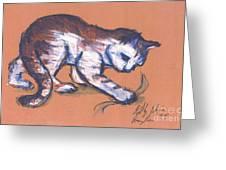 Playful Kitty Greeting Card