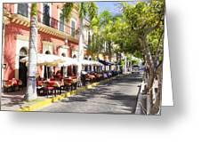 Plaza Machado Pulmonia Greeting Card