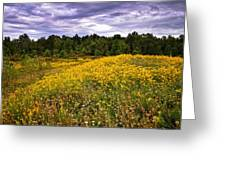 Pleasant Meadow Foreboding Sky Greeting Card