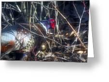 Pleasant Pheasant II Greeting Card