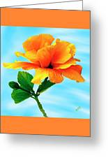 Pleasure - Yellow Double Hibiscus Greeting Card