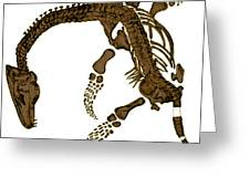 Pleisiosaurus, Mesozic Marine Reptile Greeting Card