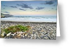 Plomo Beach Greeting Card