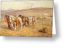 Ploughing Greeting Card
