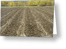 Plowed Spring Farmland Ready For Planting In Maine Greeting Card