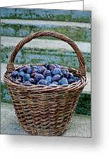 Plums In A Basket, Southern Bohemia Greeting Card