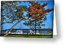 Plymouth Harbor In Autumn Greeting Card