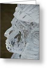 Plymouth Ice Festival Greeting Card