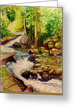 Pocantica River Rapids Greeting Card