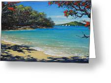 Pohutukawa Nz - Beach And Rangitoto  Greeting Card