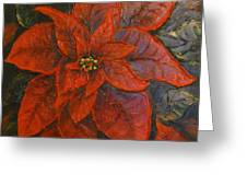 Poinsettia/ Christmass Flower Greeting Card by Elena  Constantinescu