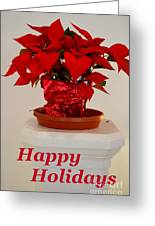 Poinsettia On A Pedestal - No 2 Greeting Card