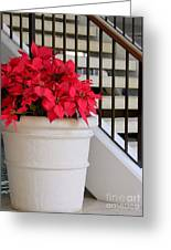 Poinsettias By The Stairway Greeting Card