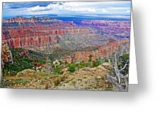 Point Imperial 8803 Feet On North Rim Of Grand Canyon National Park-arizona   Greeting Card