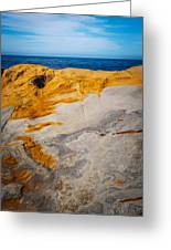 Point Lobos Abstract 14 Greeting Card