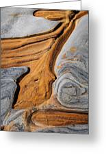 Point Lobos Abstract 5 Greeting Card