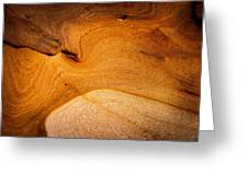 Point Lobos Abstract 8 Greeting Card