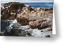 Point Lobos Coast 2 Greeting Card