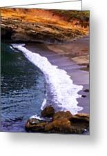 Point Lobos Greeting Card by Ron Regalado