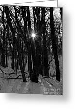 Point Of Light In Black And White Greeting Card