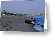 Point Wilson Lighthouse And Beach Greeting Card