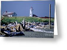 Point Wilson Greeting Card