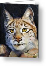 Pointed Advantage - Siberian Lynx Greeting Card