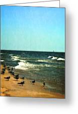Pointed Into The Wind Greeting Card
