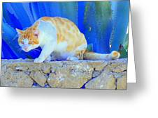Look In The Blue For The Pointing Puma Greeting Card