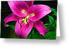 Poise 2 Greeting Card