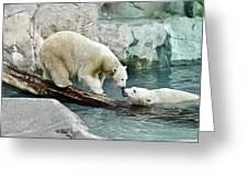 Polar Bear Kiss Greeting Card