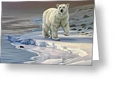 Polar Bear On Icy Shore    Greeting Card
