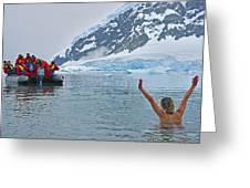 Polar Dip Greeting Card