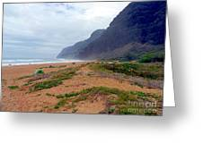 Polihale State Park Greeting Card