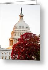 Politics Seeing Red Greeting Card by Greg Fortier