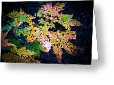 Polka Dot Autumn  Greeting Card