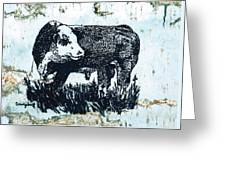 Polled Hereford Bull 26 Greeting Card