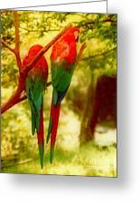 New Orleans Polly Wants Two Crackers At New Orleans Louisiana Zoological Gardens  Greeting Card