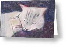 Poloma Sleep2 Greeting Card