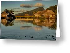 Polynesian Art Greeting Card