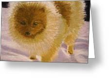Pom Pom Pup Greeting Card