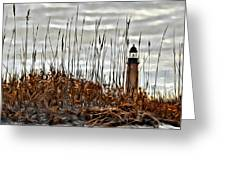 Ponce Inlet Lighthouse In Sea Grass Greeting Card