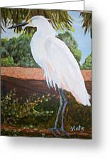 Ponce Point Egret Greeting Card