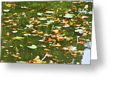 Pond 2 Greeting Card
