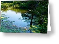 Pond 3 Greeting Card