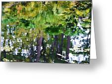 Pond 7 Greeting Card