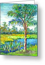 Pond And Palm Greeting Card