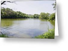 Pond At Norfolk Botanical Garden 9 Greeting Card