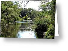 Pond At Tifft Nature Preserve Buffalo New York  Greeting Card
