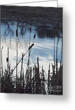 Pond At Twilight Greeting Card
